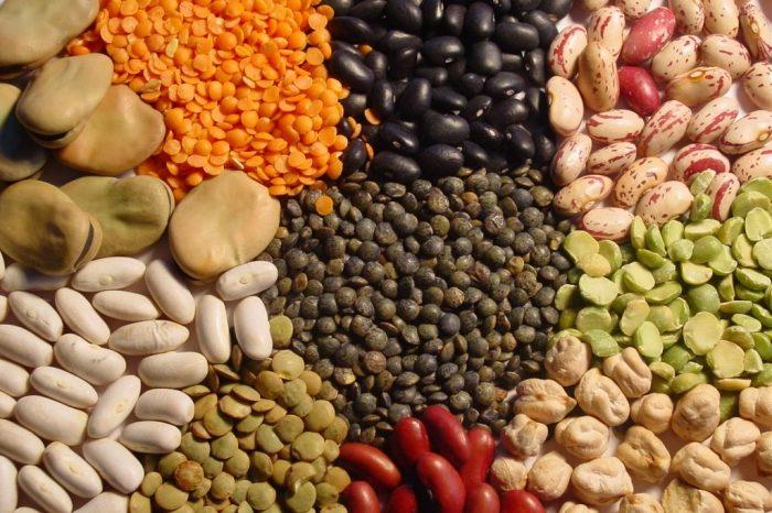 Substancje antyodżywcze w diecie