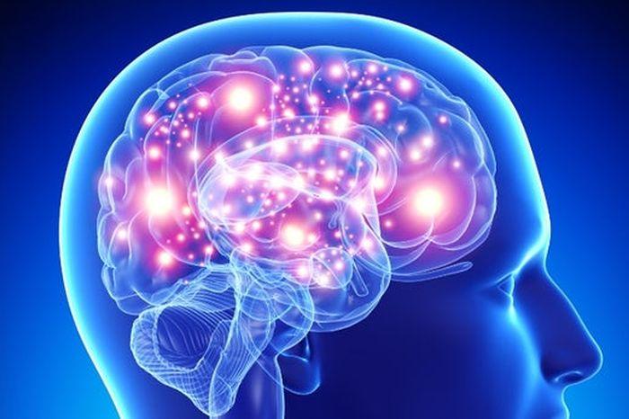 dieta keto a Alzheimer