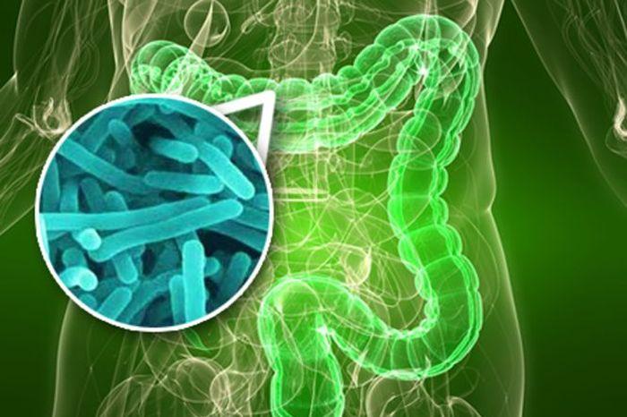 mikroflora jelitowa a cukrzyca